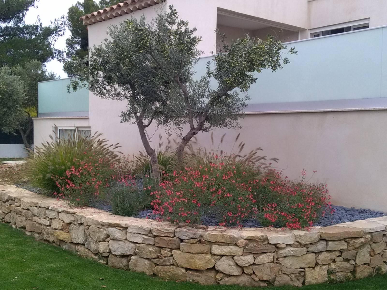 Am nagement d 39 un jardin devant la maison berre l 39 etang for Amenagement d un jardin