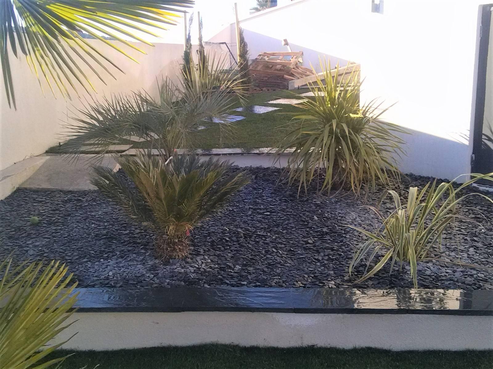 am nagement d 39 un jardin moderne avec des plantes exotiques. Black Bedroom Furniture Sets. Home Design Ideas