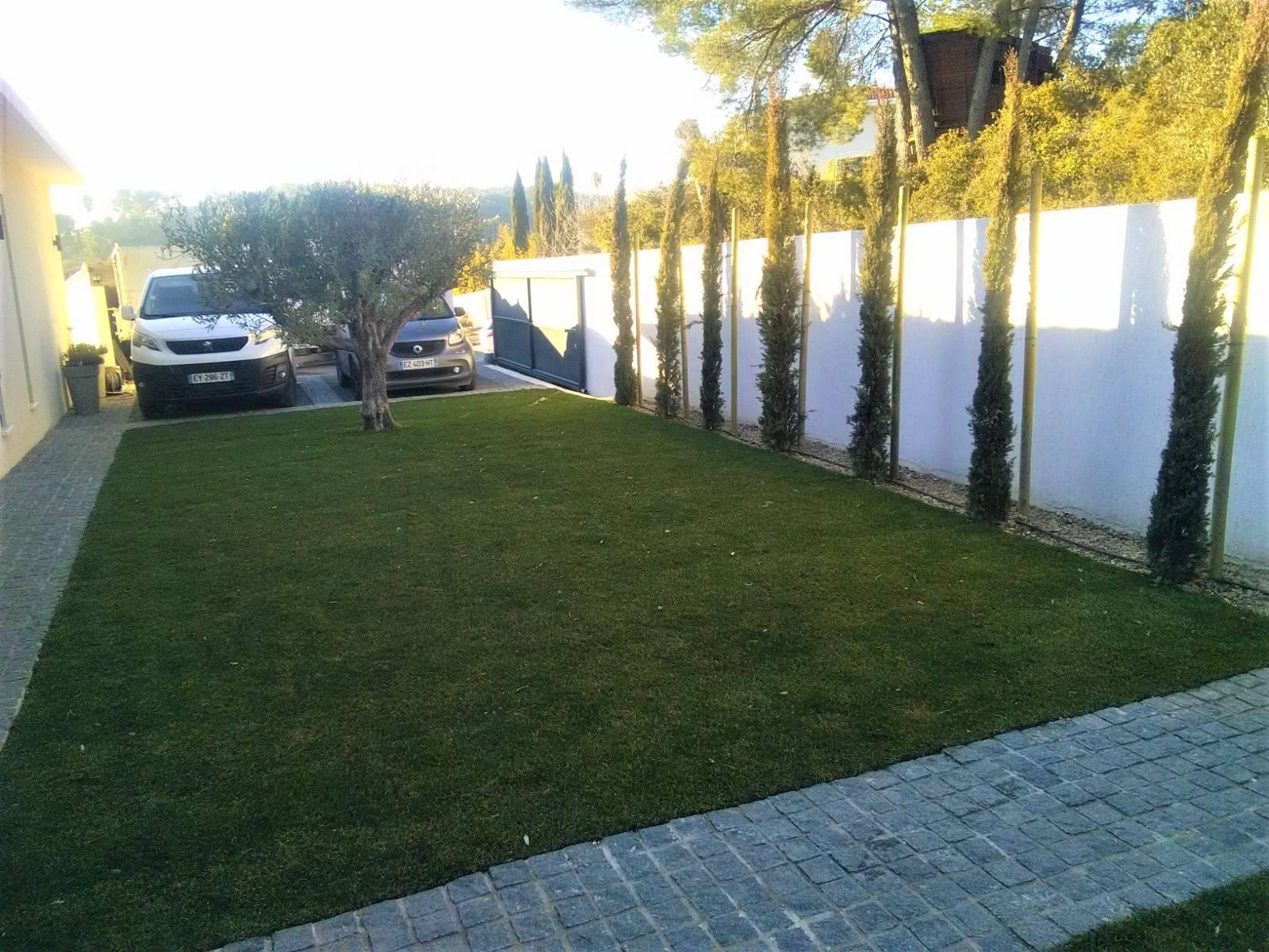 Amenagement D Un Jardin Moderne Avec Des Plantes Exotiques Autour